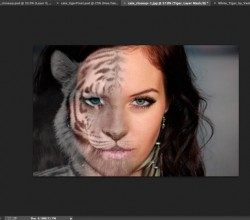 Tutorial – Crear un Morph con Photoshop
