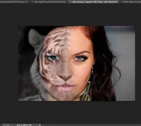 Tutorial – Crear un Morph con Photoshop
